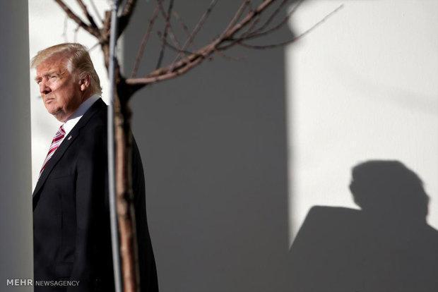 دونالد ترامپ و پائولو جنتیلونی تلفنی رایزنی کردند