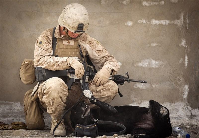افزایش شمار مبتلایان به کرونا در نیروهای نظامی آمریکا به 67 نفر