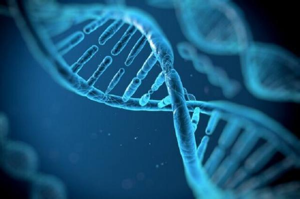 نقص های ژنتیکی بیماران با سرعت شناسایی می گردد